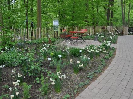 Landesgartenschau Bad Iburg 2018 - Offenes Gartentor Osnabrück